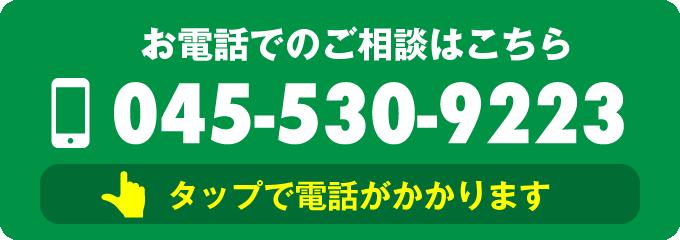 0455309223